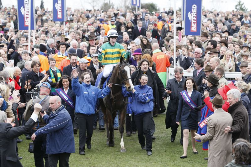 Synchronised Cheltenham Gold Cup